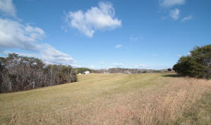 Rolling acreage at 950 Foxfire Road - For Sale at Smith Mountain Lake
