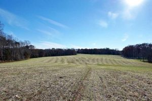 Beautiful rolling hay fields at 680 Old Salem School - For Sale at Smith Mountain Lake